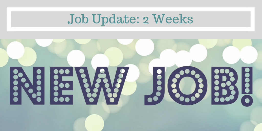 Stephanie Kamp Blog: Job Update: 2 Weeks