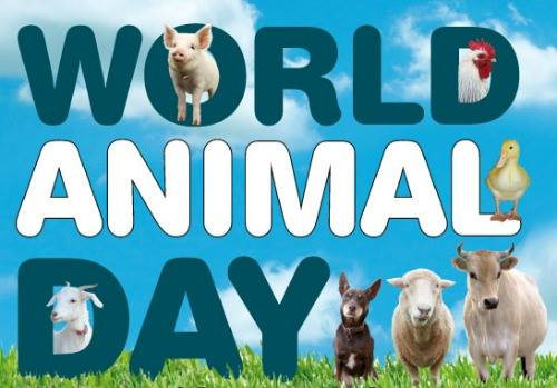 World Animal Day Wishes Lovely Pics