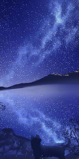 Phong cảnh dưới bầu trời sao