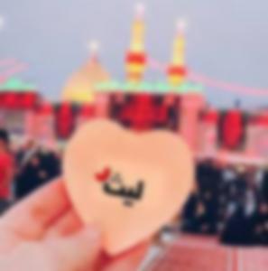 رواية عشق الليث - دينا ابراهيم روكا