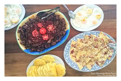 Here's our breakfast by Nanay at Lava Mountain River Farm