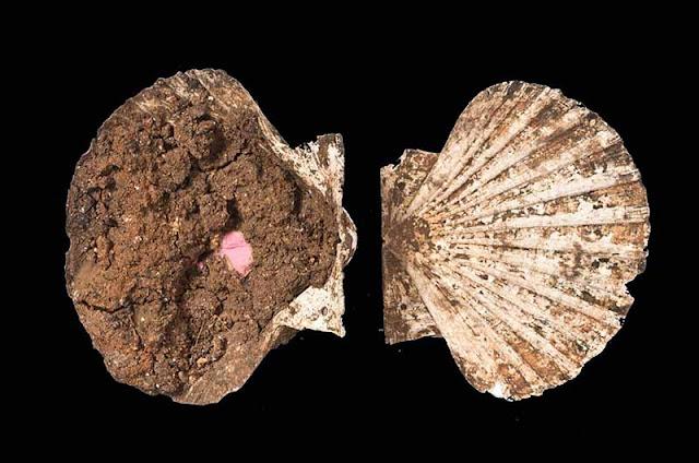 Η ανάλυση μιας ρωμαϊκής θήκης ψιμυθίωσης