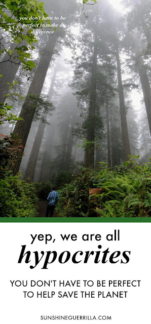 Yep, We are All Hypocrites; You Don't Have to be Perfect to Help Save the Planet