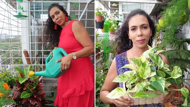 Amrita Bharti from Pune transformed her balcony story
