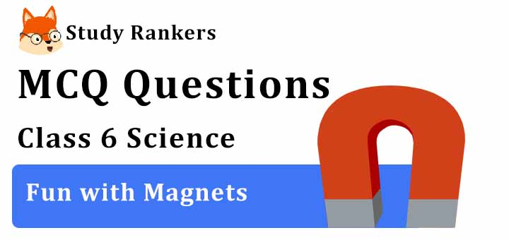 MCQ Questions for Class 6 Science: Ch 13 Fun with Magnets