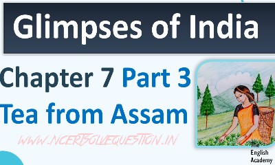 NCERT Solution [Glimpses Of India] First Flight ( Class 10 Chapter 7 ) Part 3 -  Tea From Assam