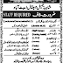 Shaheena Jameel Hospital Abbottabad Jobs