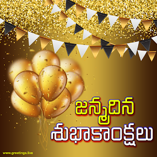 """janmadina subhakankshalu"" Telugu birthday greetings."