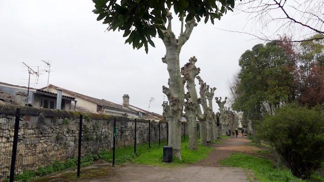 Jardin des remparts le jardin secret de bordeaux le for Jardin bordeaux