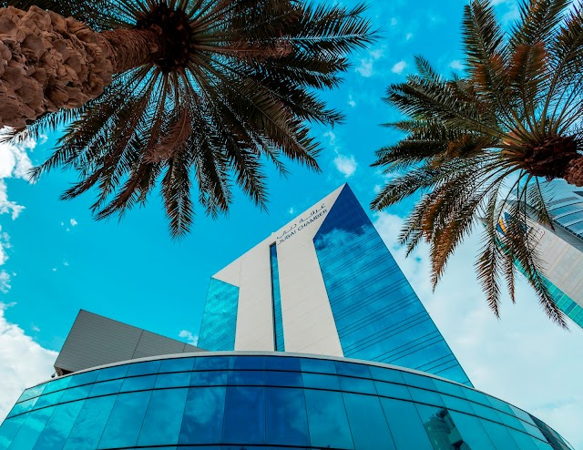 Dubai trade with Egypt totals 78% of all exports to North Africa - DCCI