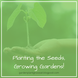 Planting the Seeds, Growing a Garden!
