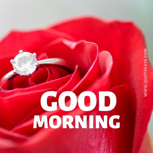 Good morning flower and ring