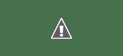 La performance générale des blogs comme stratégie n'a pas beaucoup changé au fil des années. Il a été demandé aux blogueurs de rendre compte des résultats et chaque année, environ 1 blogueur sur 4 fait état de « résultats solides ».