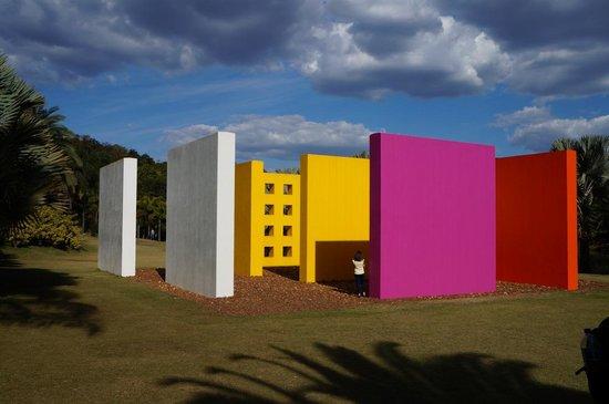 """""""Arte ambiental, arte pós-moderna, Hélio Oiticica"""" 1966 - Mário Pedrosa"""