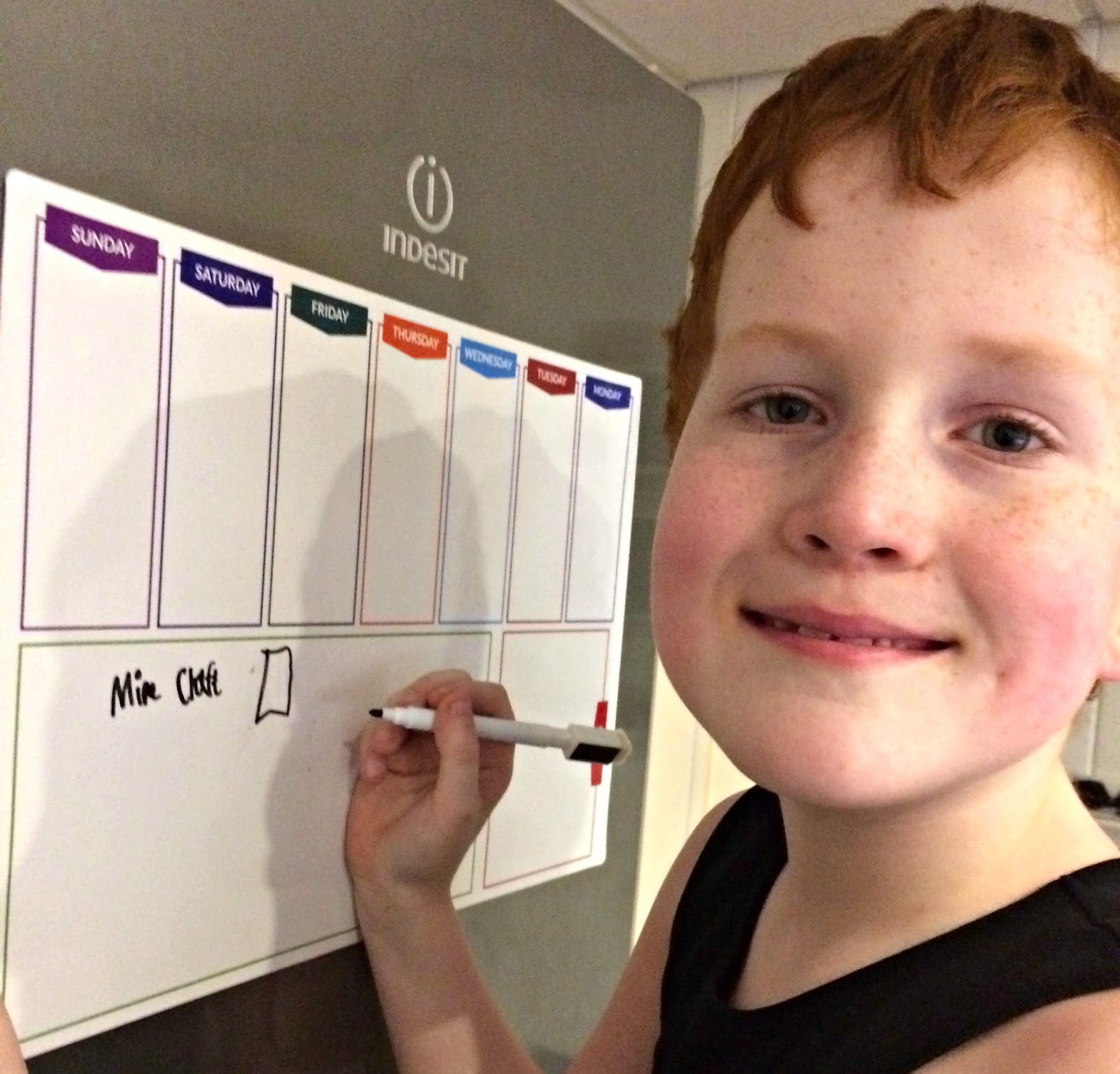 Financial planning - Ieuan adding Minecraft to the family weekly shopping list