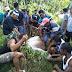Inilah Nama-Nama Kelompok Penyumbang Hewan Kurban di Desa Bulawan