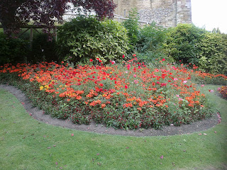 Red Flowers at the castle