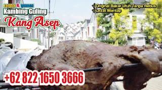 Kambing Guling Muda Cimindi Bandung, kambing guling muda cimindi, kambing guling cimindi bandung, kambing guling cimindi, kambing guling,