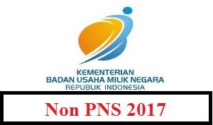 PENERIMAAN PEGAWAI NON PNS KEMENTERIAN BUMN TAHUN 2017