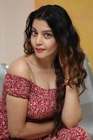 Diksha Panth in a Deep neck Short dress at Maya Mall pre release function ~ Celebrities Exclusive Galleries 008.JPG