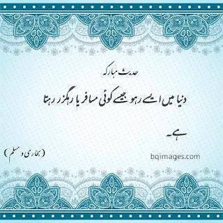 40 shades in Urdu SMS