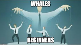 Whales control Beginners
