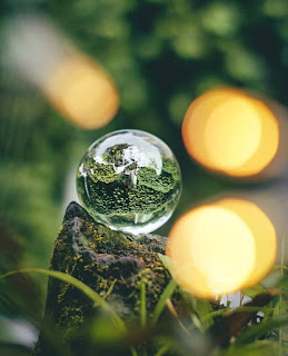 lensball photography images
