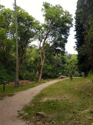 Grassy Bronte Park in Sydney
