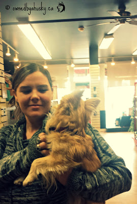 My First Furry Customer #SmithsFallsPetStore