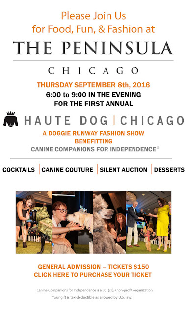 Haute Dog Chicago