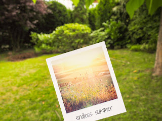 polaroid-endless-summer
