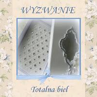 http://szuflada-szuflada.blogspot.com/2019/01/wyzwanie-styczniowe-totalna-biel.html