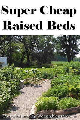 Inexpensive Raised Bed Ideas