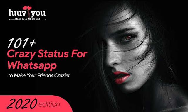 101+ Crazy Status For Whatsapp to Make Your Friends Crazier