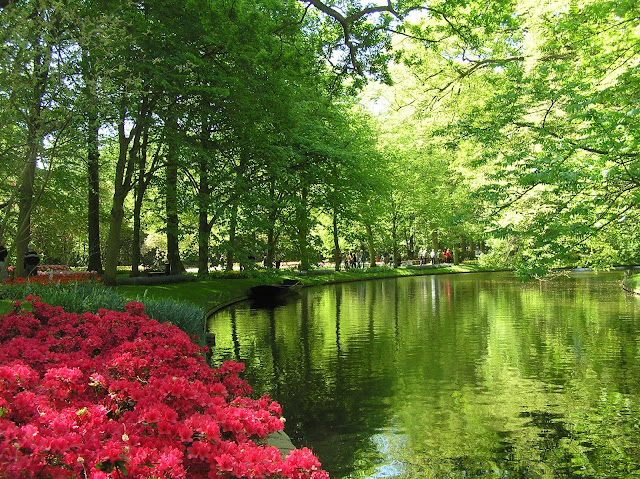 park wiosną