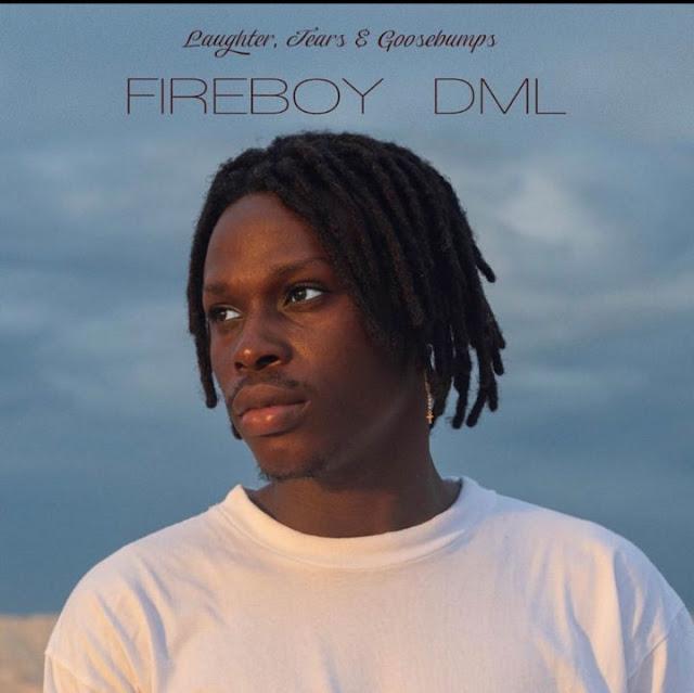 Fireboy DML – Laughter, Tears & Goosebumps Full Album Free Download