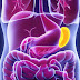 Hypersplenism | causes, clinical features and management