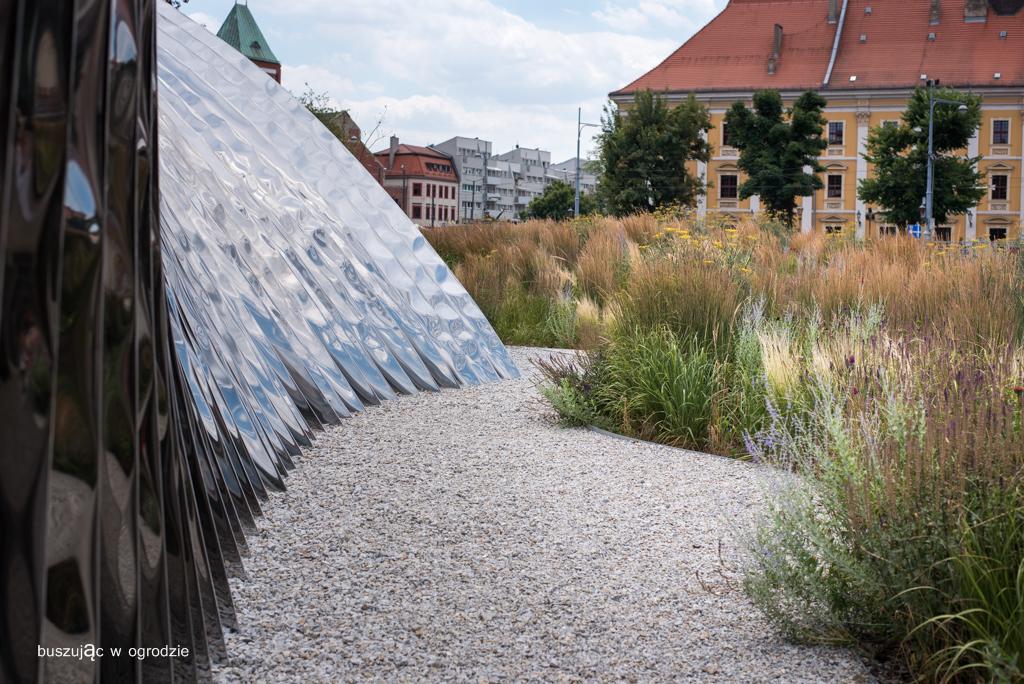 jeżówki, trawy ozdobne, Piet Oudolf