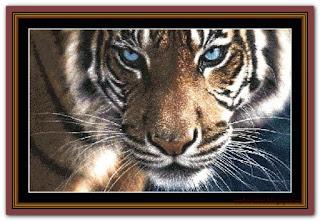 """Tiger!"" Witchykitt Designs"