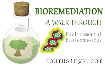 BIOREMEDIATION - A WALK THROUGH (#biotechnology)(#biochemistry)(#environmentalscience)(#ipumusings)