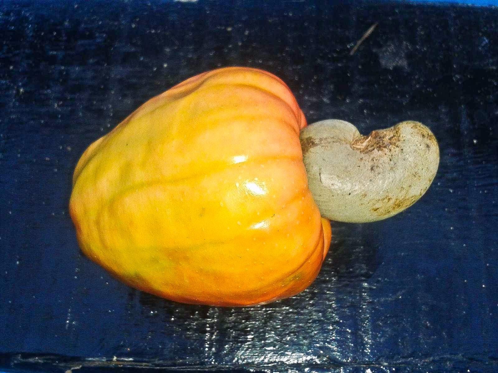 Foodaholix Agonda Goa Cashew Fruit