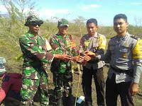 Anggota Danramil Donggo Tanam Pohon di Kawasan Taman Nasional Tambora