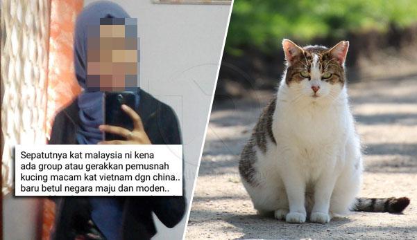 'Sepatutnya Malaysia ada group pemusnah kucing macam di Vietnam/China baru betul maju & moden' - kata gadis ini