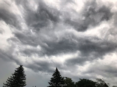 July 20, 2019 Safe inside as sever thunderstorms roll through.