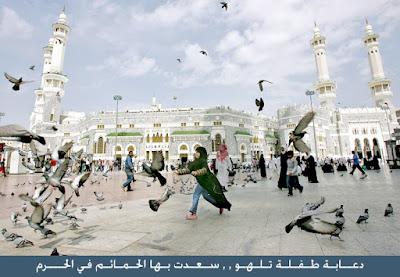 ความรักและสันติภาพในอิสลาม