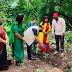 माजी आमदार नरेंद्र पवार यांच्या वृक्षारोपण आवाहनाला कल्याण करांचा उत्स्फूर्त प्रतिसाद