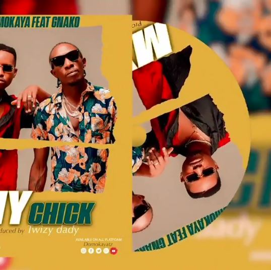 AUDIO | Domo Kaya Ft G Nako – My Chick | Download New song