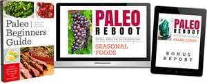 free paleo beginners guide book