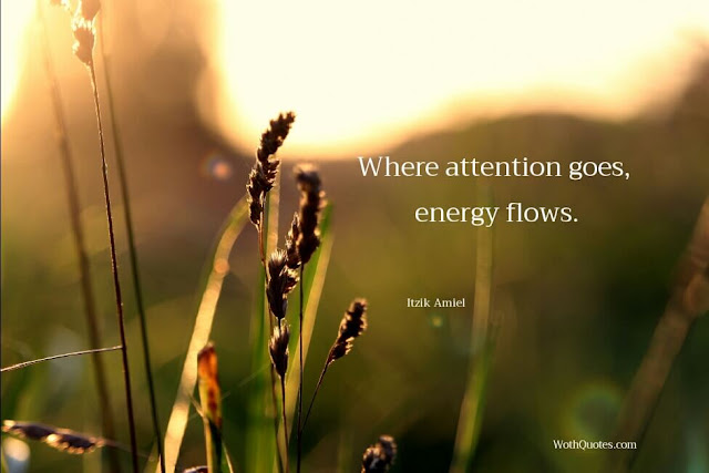 Attention Quotes