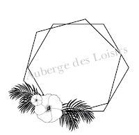 http://www.aubergedesloisirs.com/tampons-non-montes/2561-hexagone-tropical.html